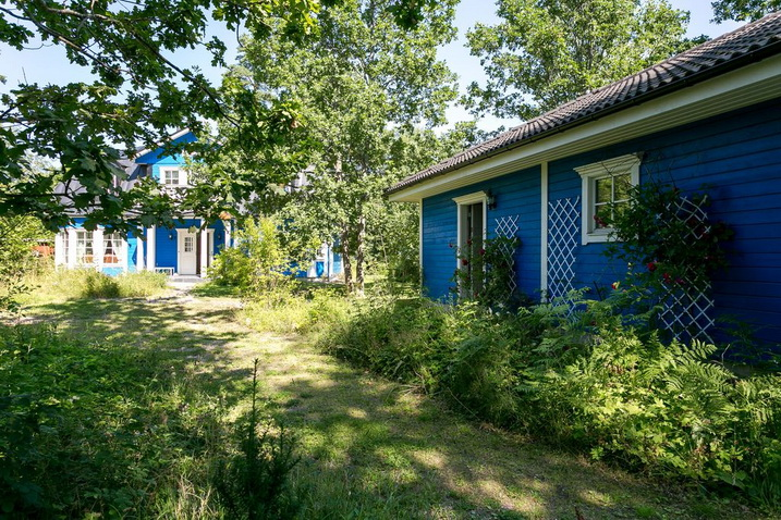 blue-classic-house-in-forest (28)