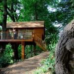 บ้านกระท่อมบนต้นไม้ สัมผัสความร่มรื่นอันแท้จริงของธรรมชาติ พร้อมสิ่งอำนวยความสะดวกครบครัน