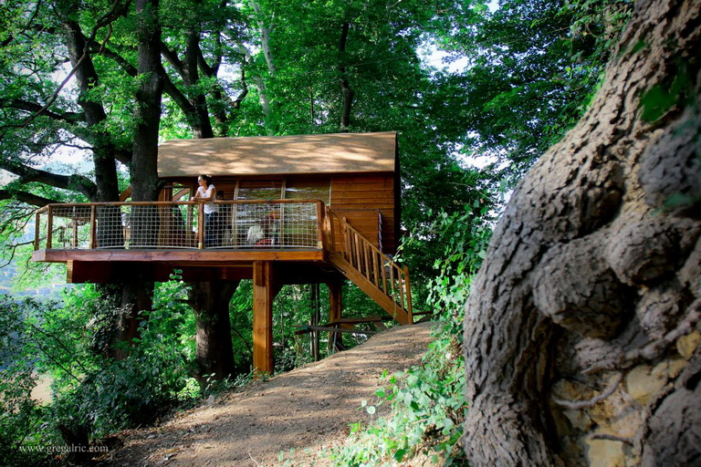 cabin-house-on-tree (1)