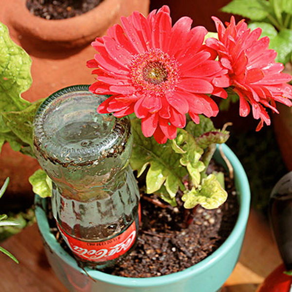 diy-glass-bottle-watering-globes (1)