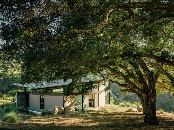 modern-butterfly-house-on-hill (25)