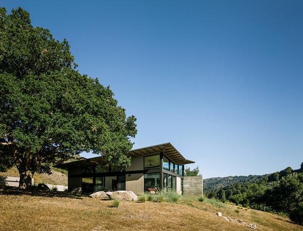 modern-butterfly-house-on-hill (4)