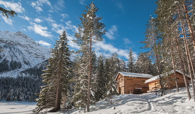 modern-cabin-house-in-forest (1)