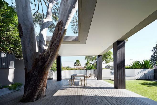 modern-concrete-glass-house (6)
