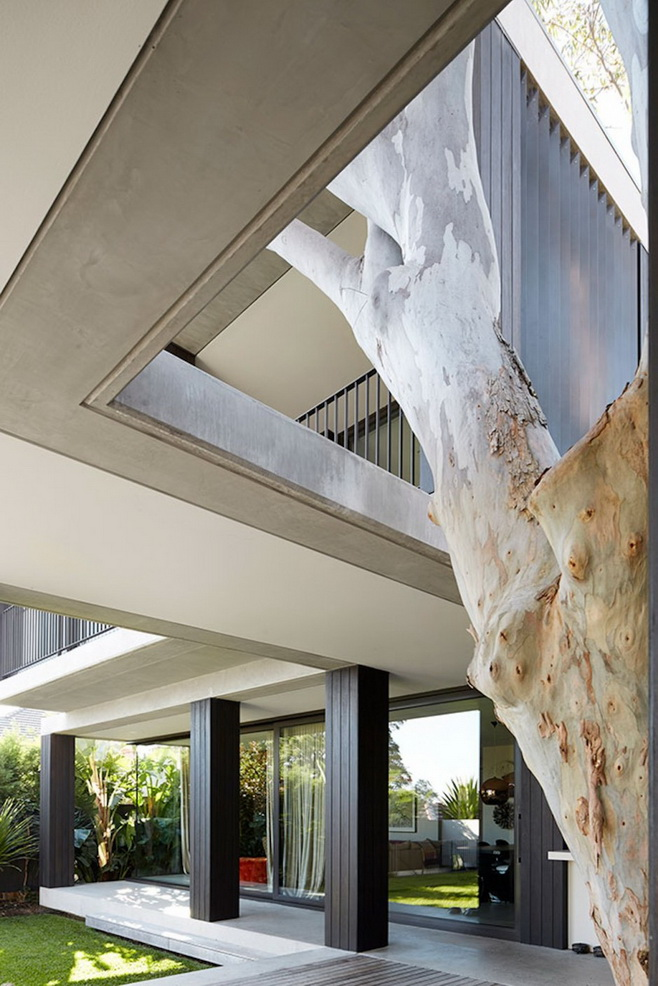 modern-concrete-glass-house (7)