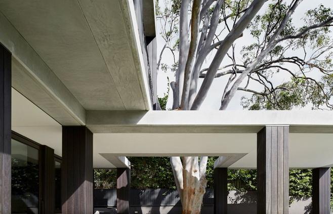 modern-concrete-glass-house (8)