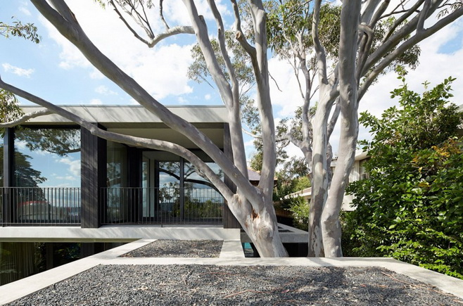 modern-concrete-glass-house (9)