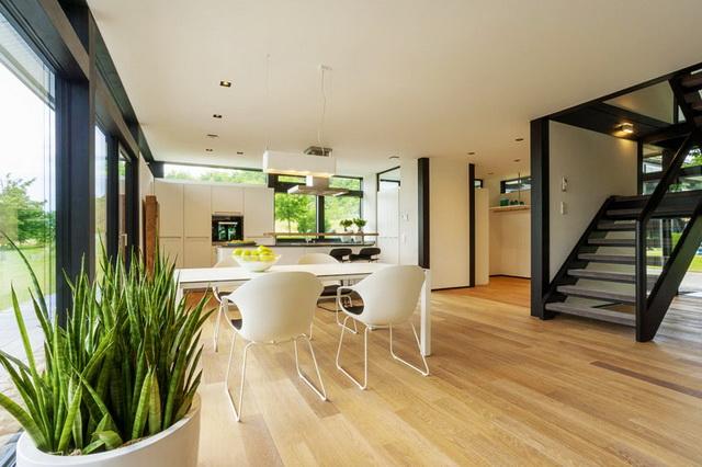 modern-glass-house (18)_resize