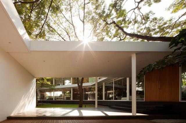 modern-glass-house-in-bkk (19)