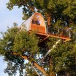 บ้านต้นไม้สไตล์โมเดิร์น ออกแบบอย่างโดดเด่นและมีสไตล์ด้วยทรงหลังคาโค้งๆ