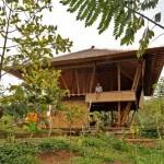 บ้านไม้ทรงใต้ถุนแบบ Open-air สัมผัสกลิ่นอายธรรมชาติแบบทรอปิคอล