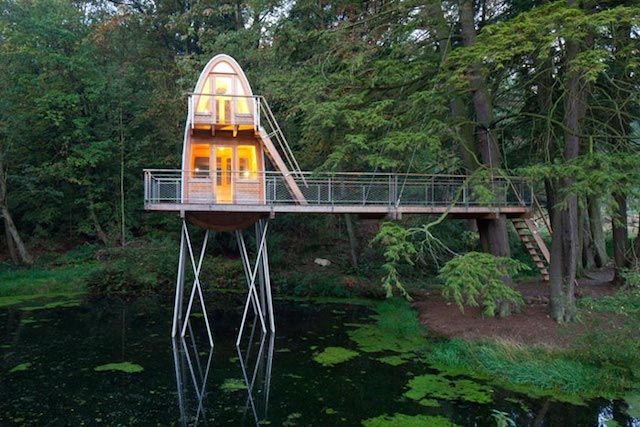 tower-tree-house-on-pond (7)