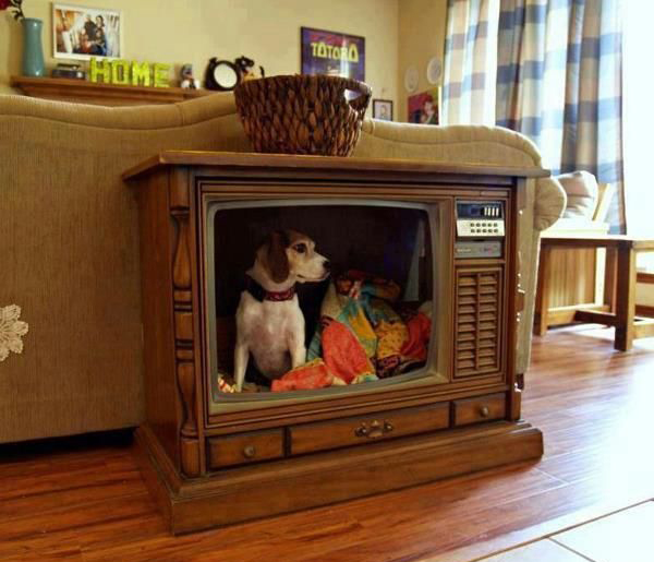 25-creative-dog-house (24)
