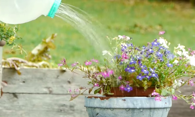 How to Make a Basic Watering Can (10)