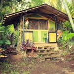 กระท่อมกลางป่าสไตล์ทรอปิคอล ความสุขอันยิ่งใหญ่ในบ้านหลังเล็กๆ