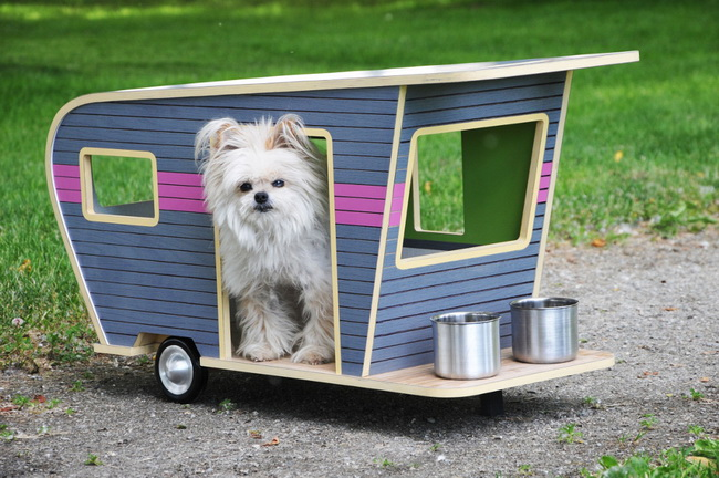 colorful-dog-house (1)_resize