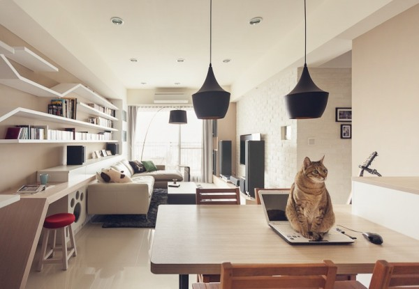 contemporary-apartment-for-feline (4)