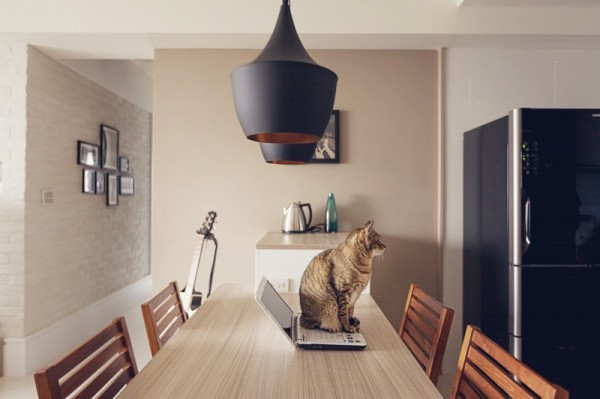 contemporary-apartment-for-feline (5)