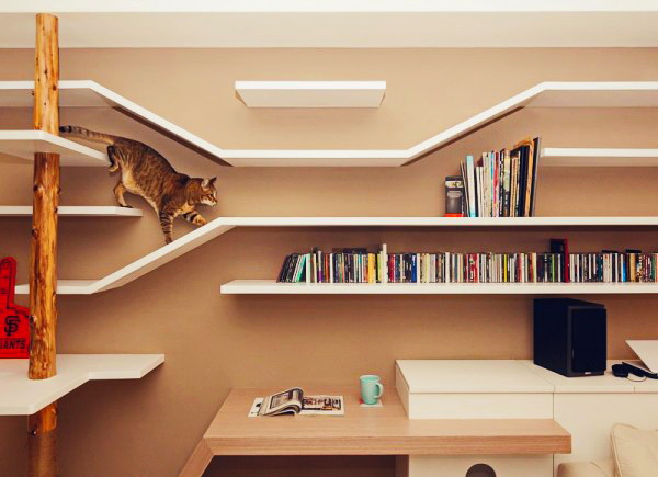 contemporary-apartment-for-feline-8
