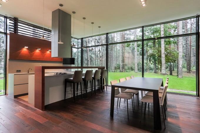 extreme elegant modern house (10)