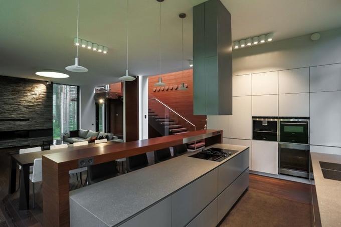extreme elegant modern house (7)