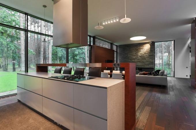 extreme elegant modern house (8)