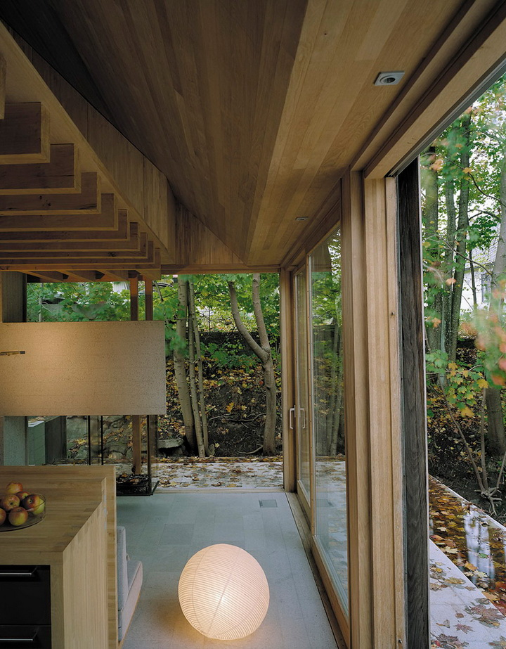 little glass house in forest (4)