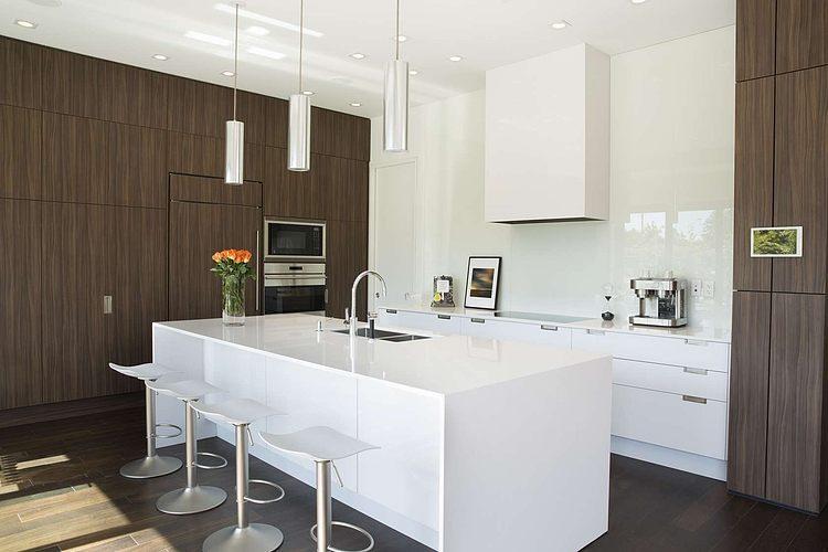 modern contemporary elegant house (9)