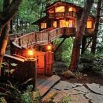 บ้านต้นไม้กลางป่าขนาดสองชั้น ที่สุดของบรรยากาศธรรมชาติ