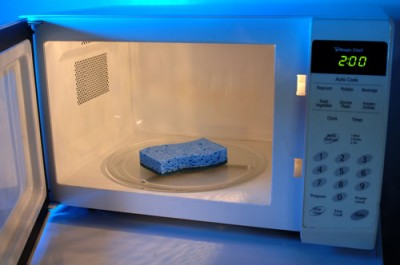 sponge-in-microwave