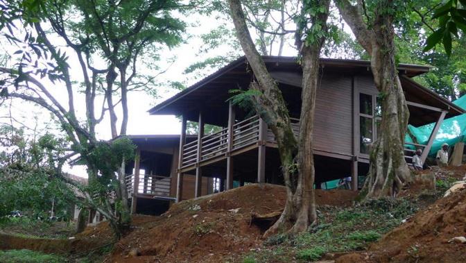 tea platation guest cabin (11)