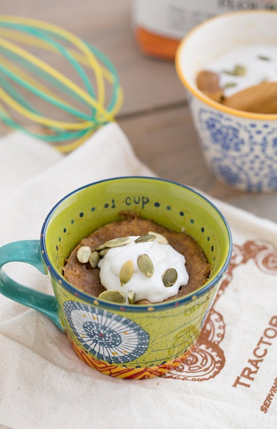 20 sweet treats mug cake recipes (11)