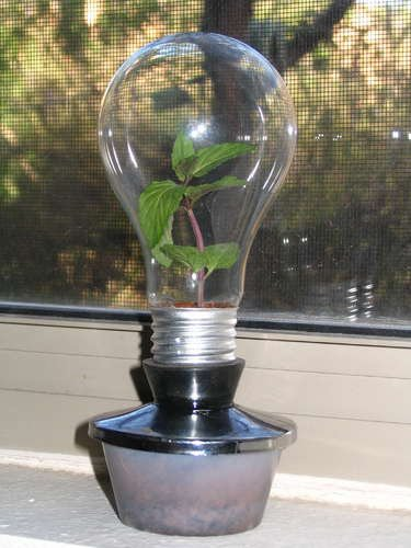 21 creative-ways-to-repurpose-lightbulbs (6)