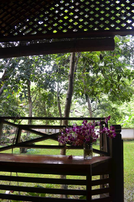 TRANQUIL COZY LANNA house (7)