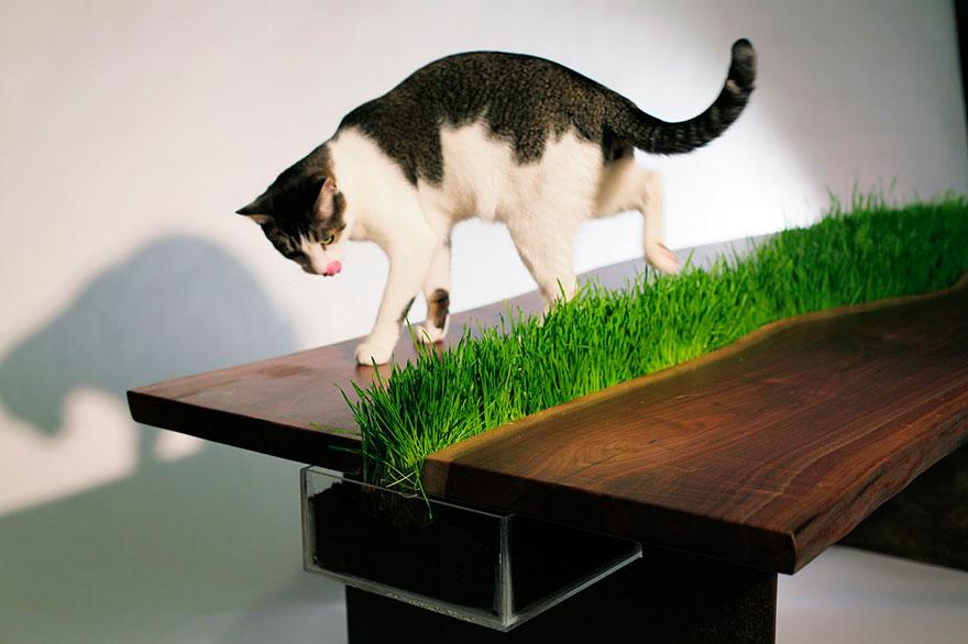 cat-furniture-creative-design-20