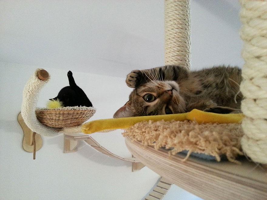 cat-furniture-creative-design-30