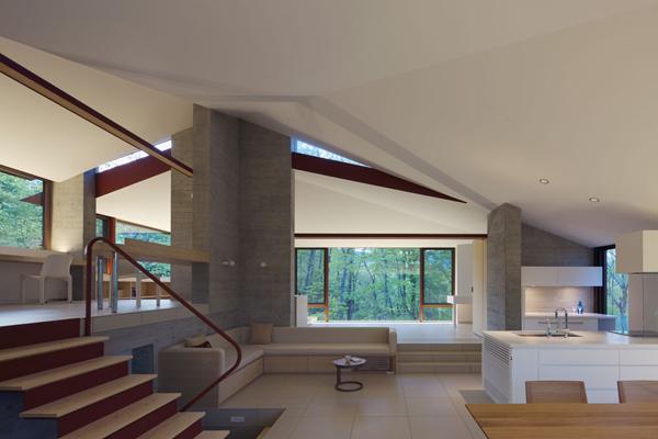contemporary open concept house (15)
