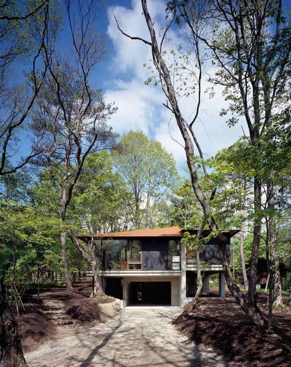 contemporary open concept house (2)