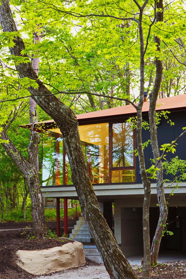 contemporary open concept house (3)