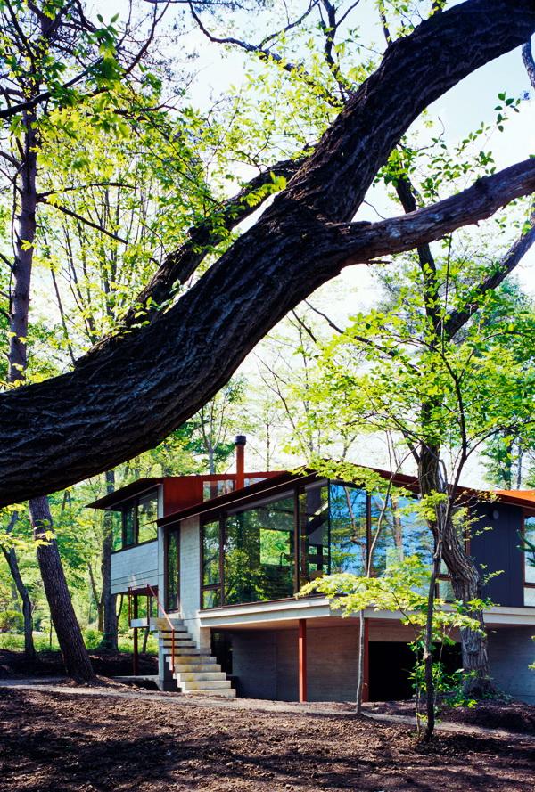 contemporary open concept house (5)