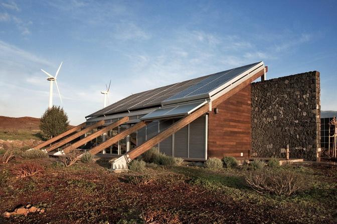 natural wall eco house (4)