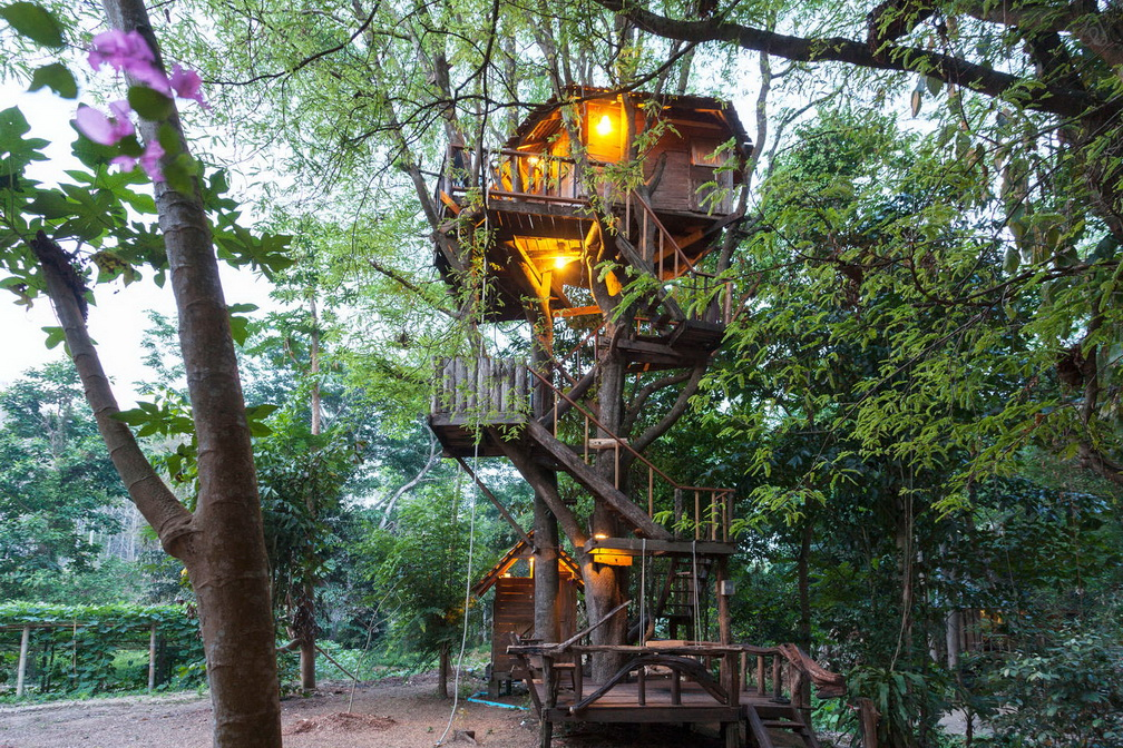 tamarind treehouse (1)