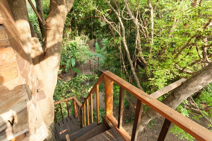 tamarind treehouse (11)