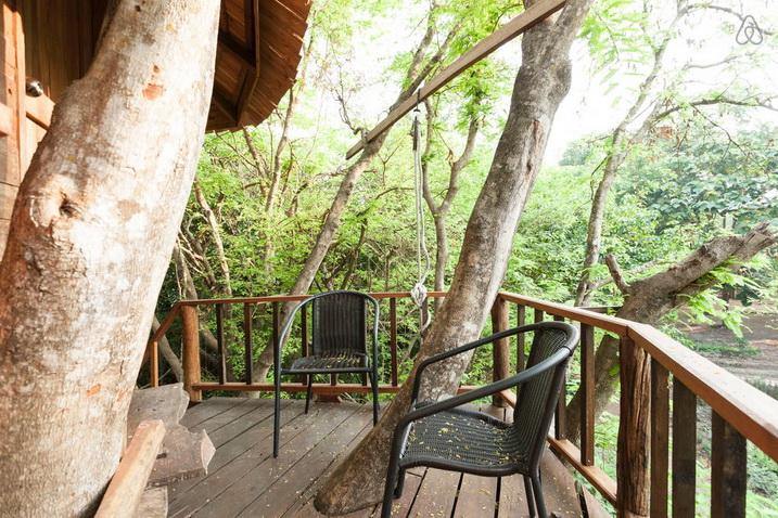 tamarind treehouse (13)