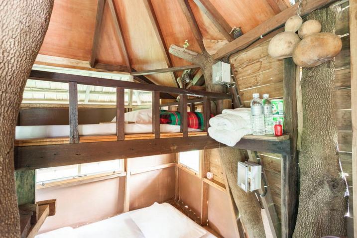 tamarind treehouse (16)