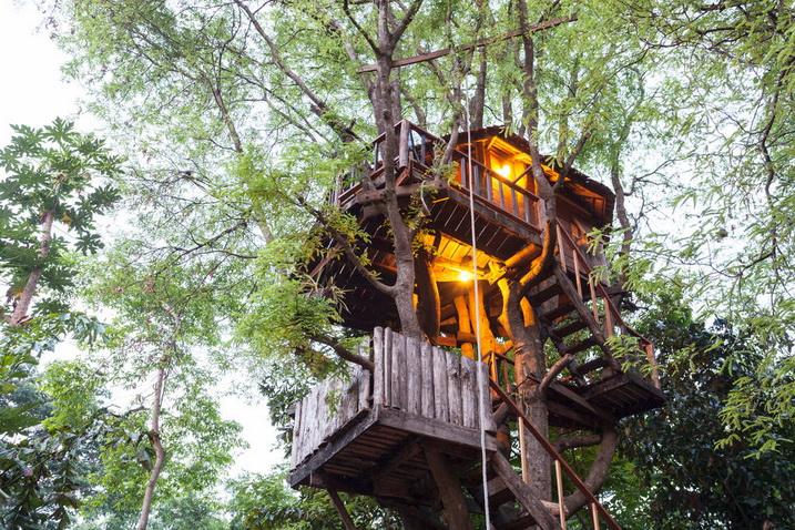 tamarind treehouse (2)