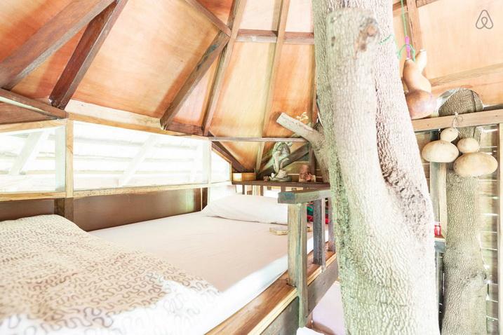 tamarind treehouse (20)