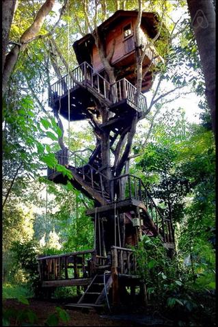 tamarind treehouse (22)