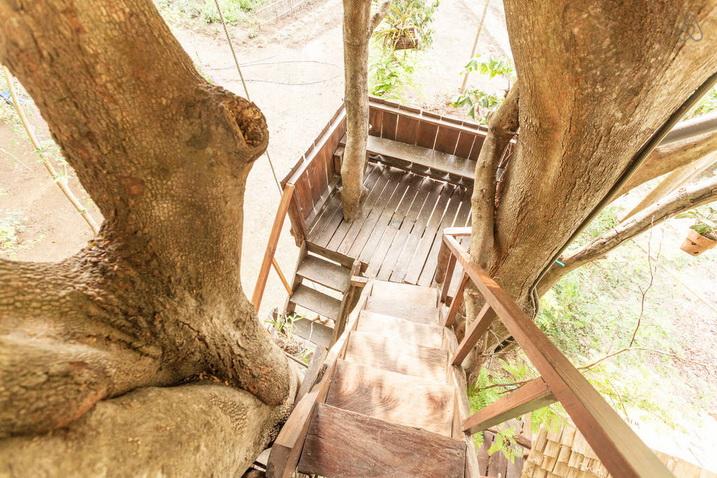 tamarind treehouse (25)