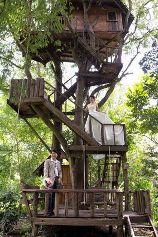 tamarind treehouse (26)